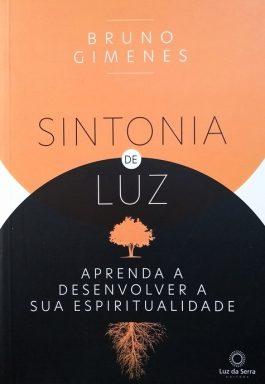 Sintonia De Luz: Aprenda A Desenvolver A Sua Espiritualidade